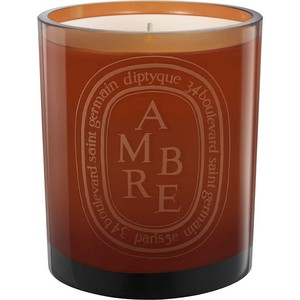 DIPTYQUE Ambre scented candle 300g - 부루 구매대행